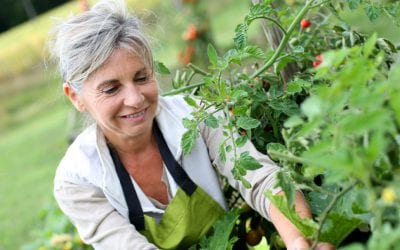 Gardening-injury-prevention-physical-therapy