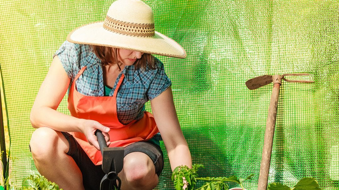 Protecting Your Back While Gardening