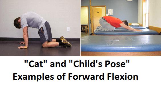yoga-cat-childspose-back-pain