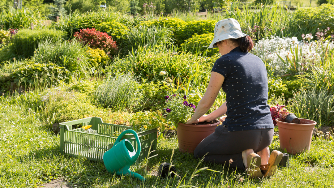 Garden with Ease: Follow These Guidelines