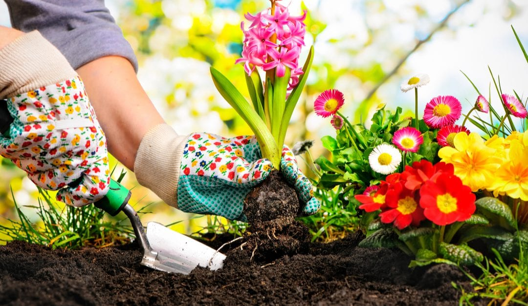 Gardening: How to Save Your Muscles