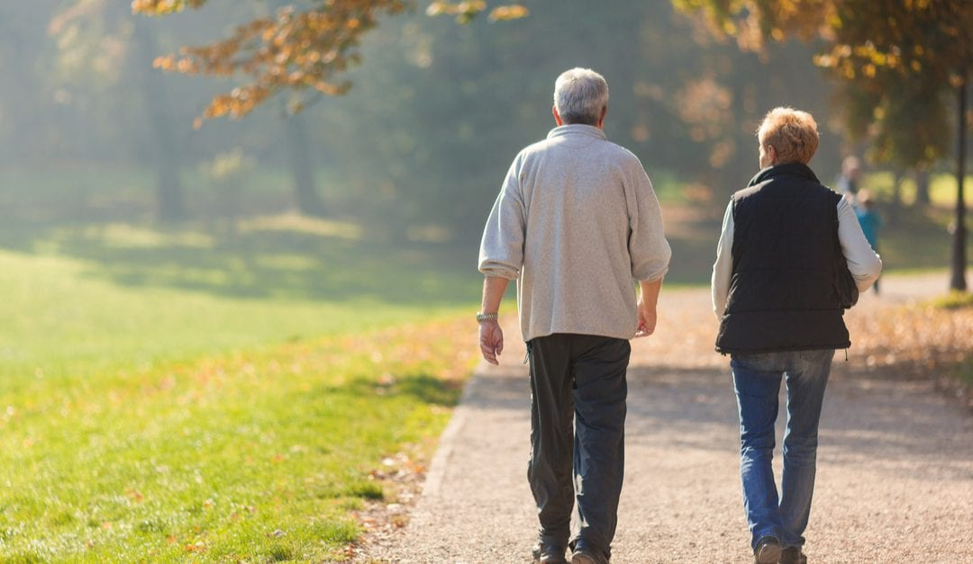 Improving Joint Health to Combat Aging