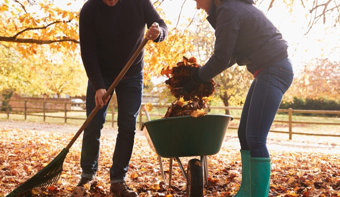 Raking: Protecting Your Back and Shoulders
